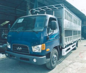 Hyundai110SL 7 Tấn Chở Gia Súc