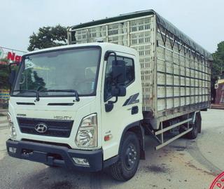 Hyundai EX8L Chở Gia Cầm